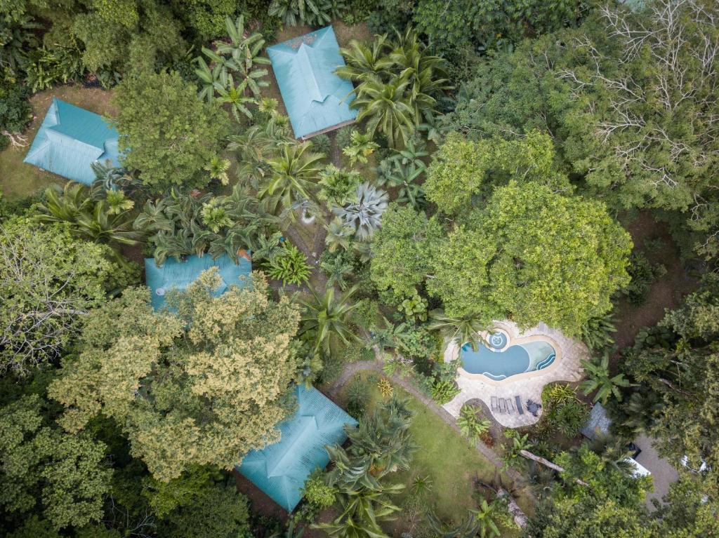 A bird's-eye view of El Nido Pool & Garden Lodge