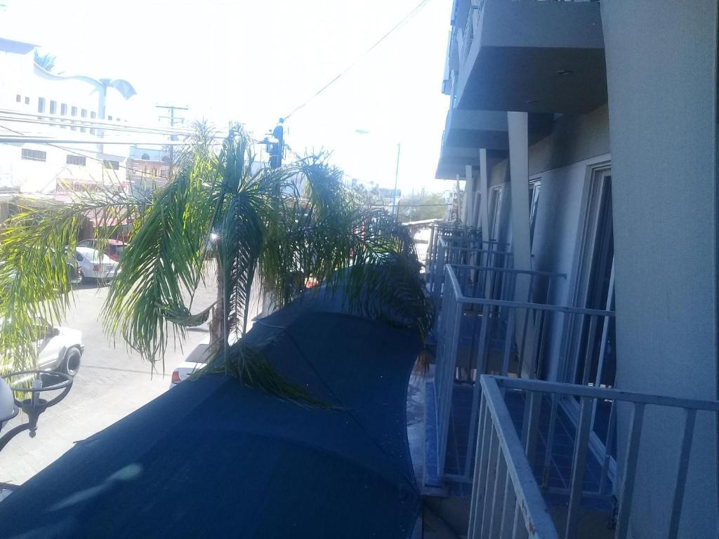 SEX ESCORT San Felipe