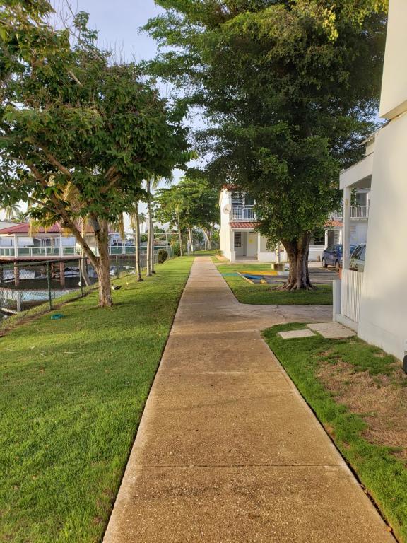 Beach Villas Dorado Puerto Rico, Dorado – Updated 2019 Prices