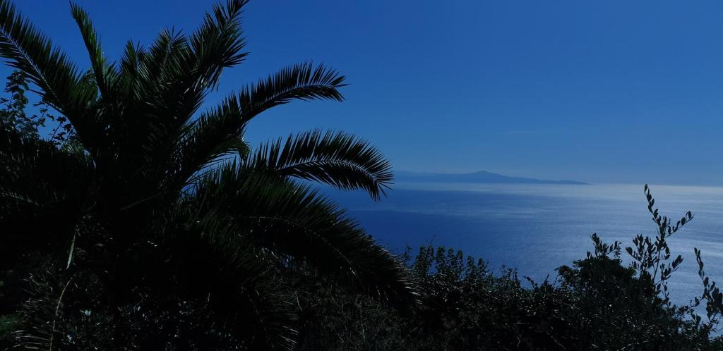 Agriturismo Mare E Monti Agerola Italy Booking Com