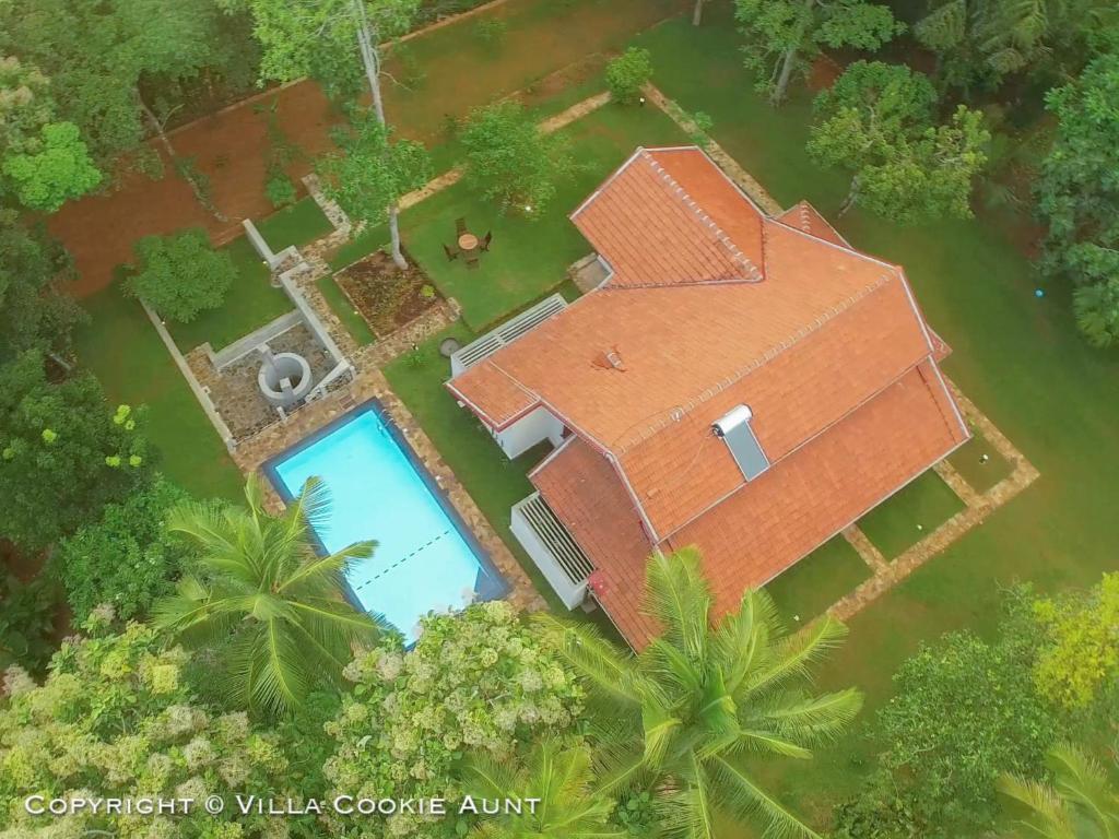 Blick auf Villa Cookie Aunt aus der Vogelperspektive