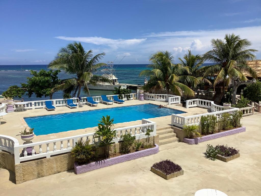 Вид на бассейн в Cariblue Hotel & Scuba Resort или окрестностях