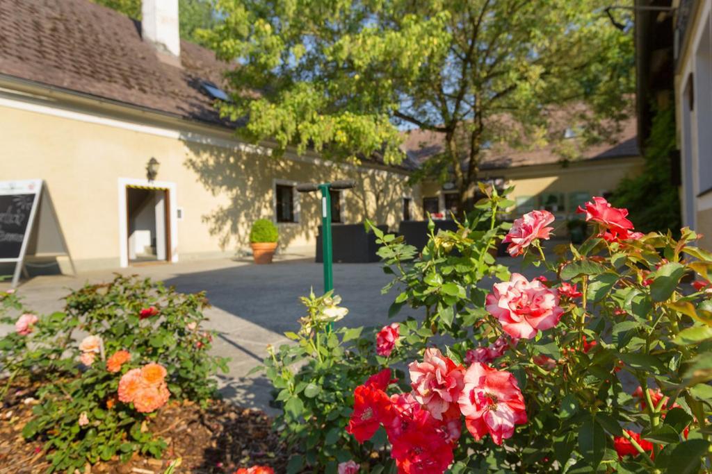 Ternitz wo mnner kennenlernen - Trumau dating service