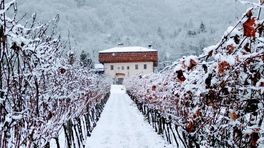Agritur La Polentera in de winter