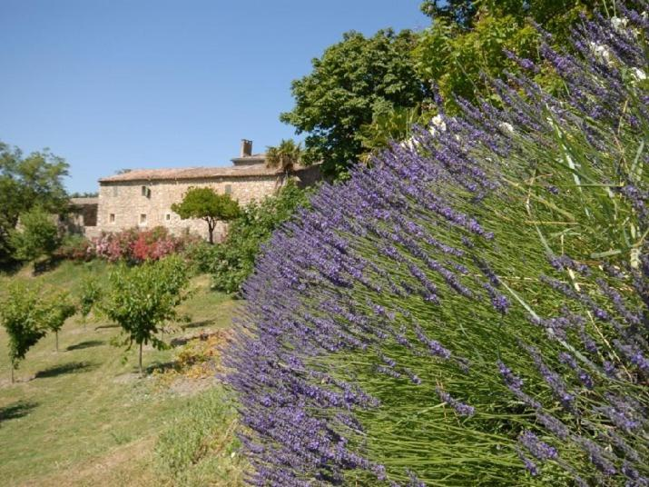Bed And Breakfast Domaine De Cousignac Bourg Saint Andeol France