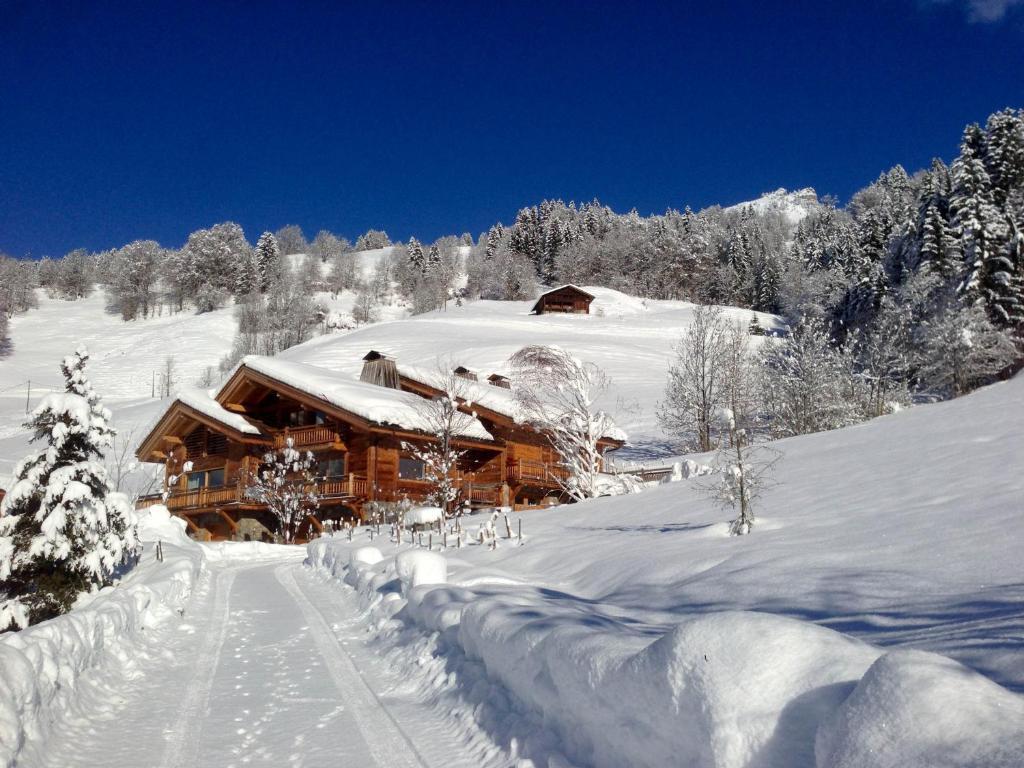 Chalet La Vigogne et Spa