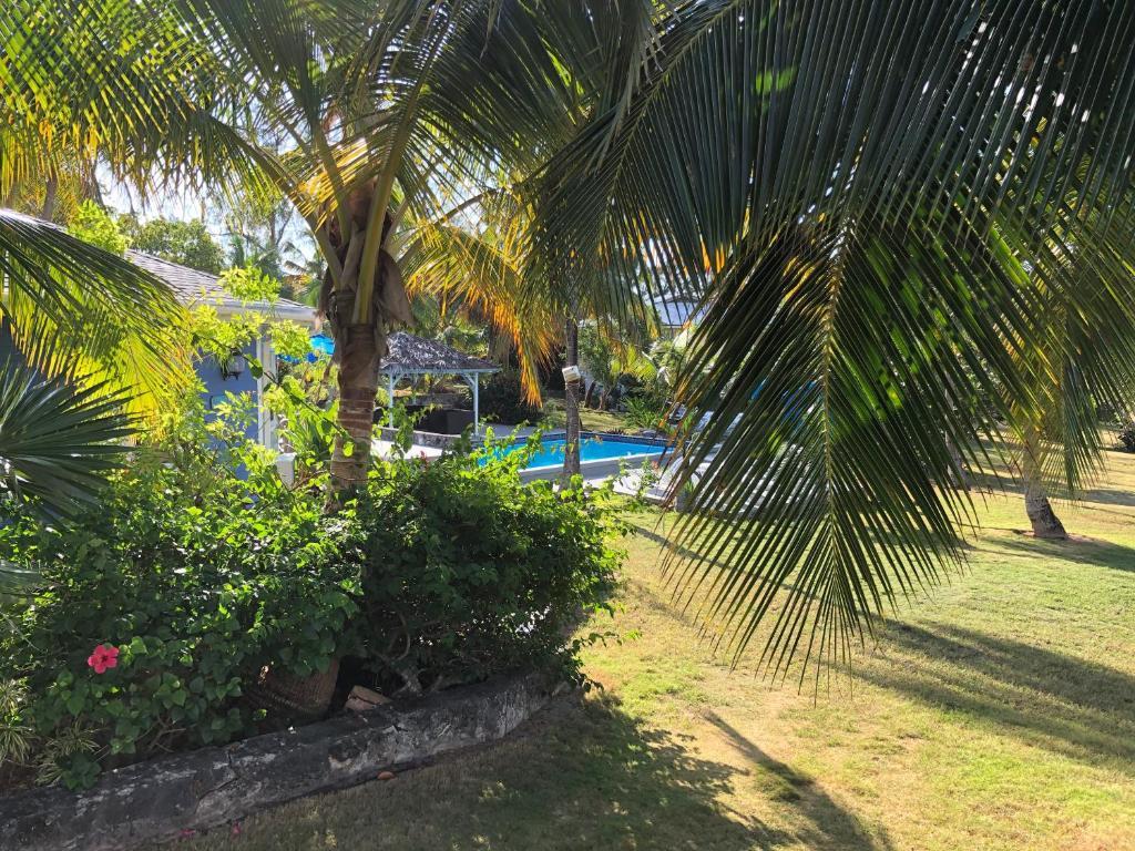 upoznavanje s besplatnim bahamima izlazak aziz ansari