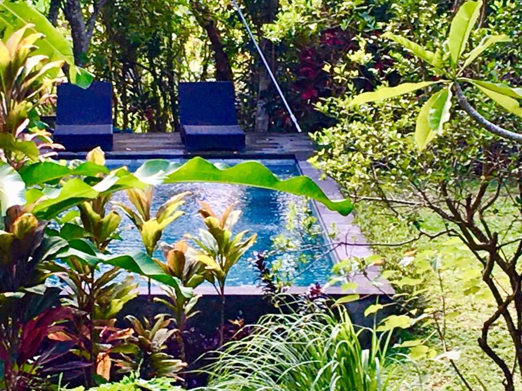 The swimming pool at or close to Bali Firefly BnB