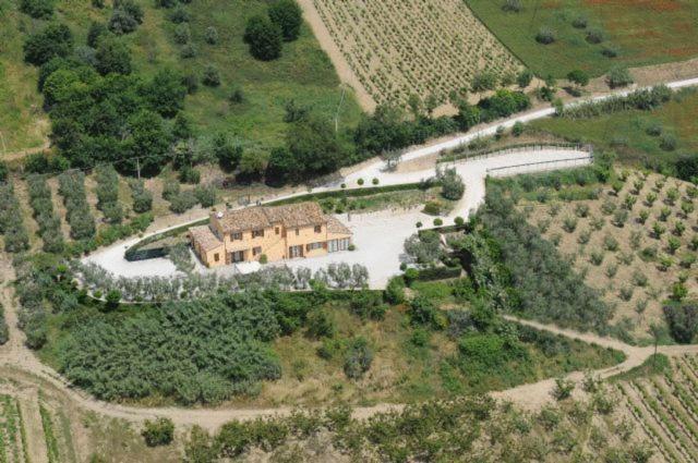A bird's-eye view of Acquarello