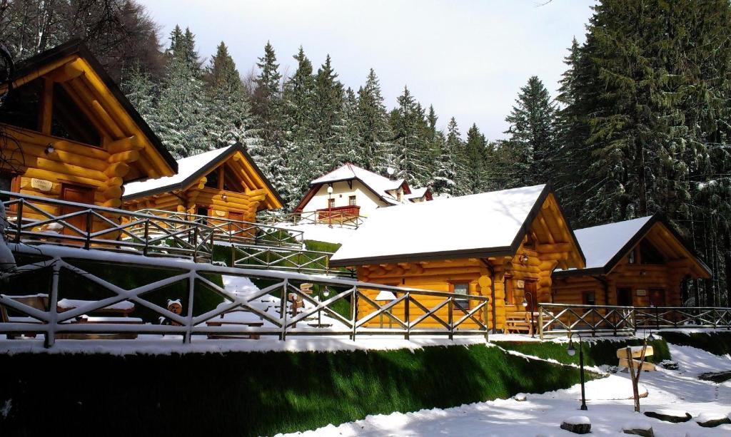 Green Village Ruševec during the winter