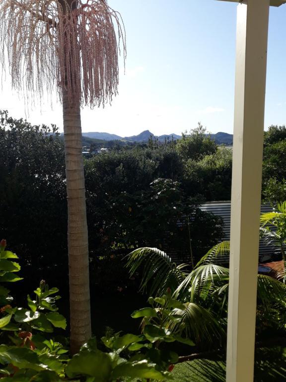 Patiki Bay View