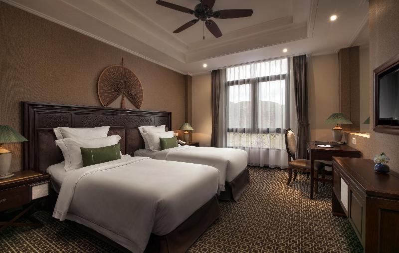 Room #164556218