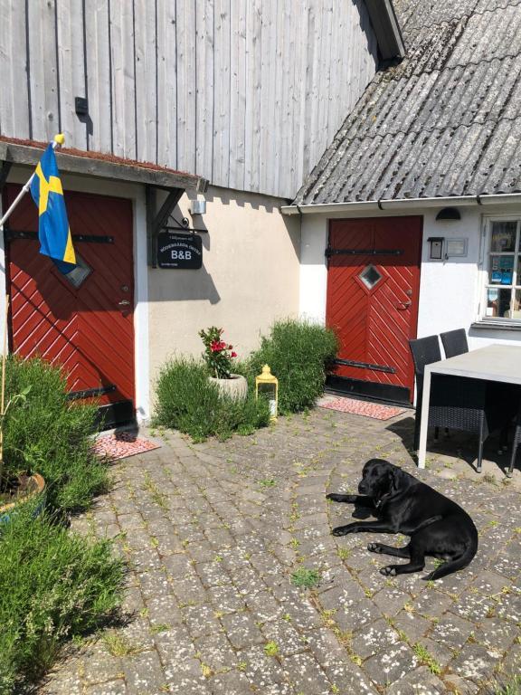 Onile dating Tysfjord. Dating site, dejting Av hammenhg