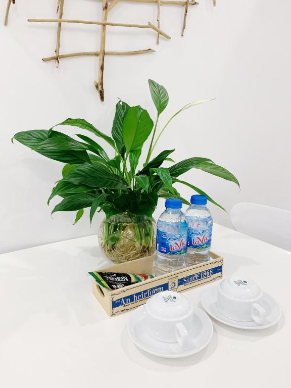 Vung Tau Melody apartment - The Fives