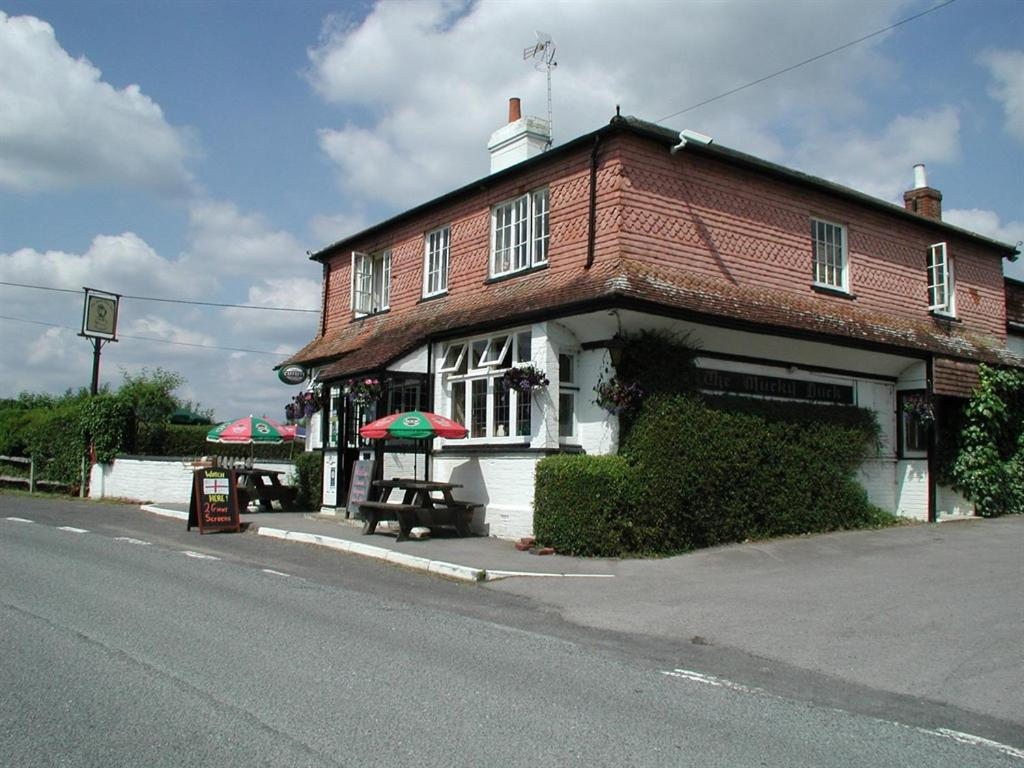 Mucky Duck Inn in Alfold, Surrey, England