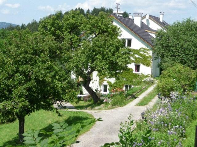 Singlebrse in Rohrbach und Singletreff - flirt-hunter