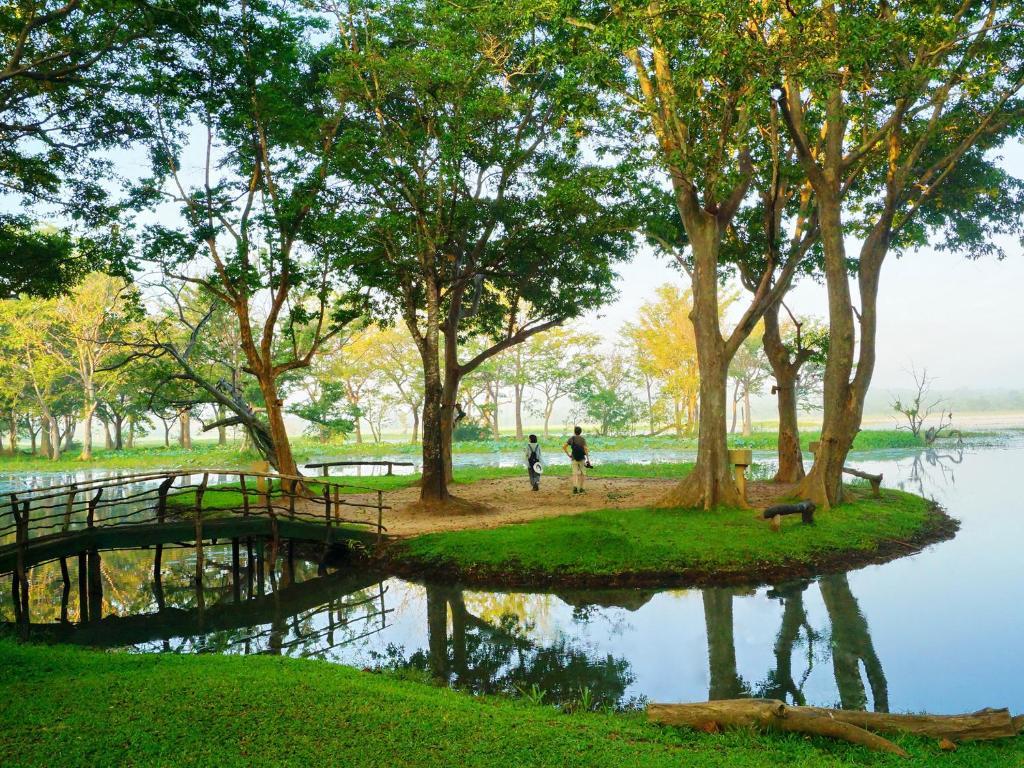 A garden outside Cinnamon Lodge Habarana