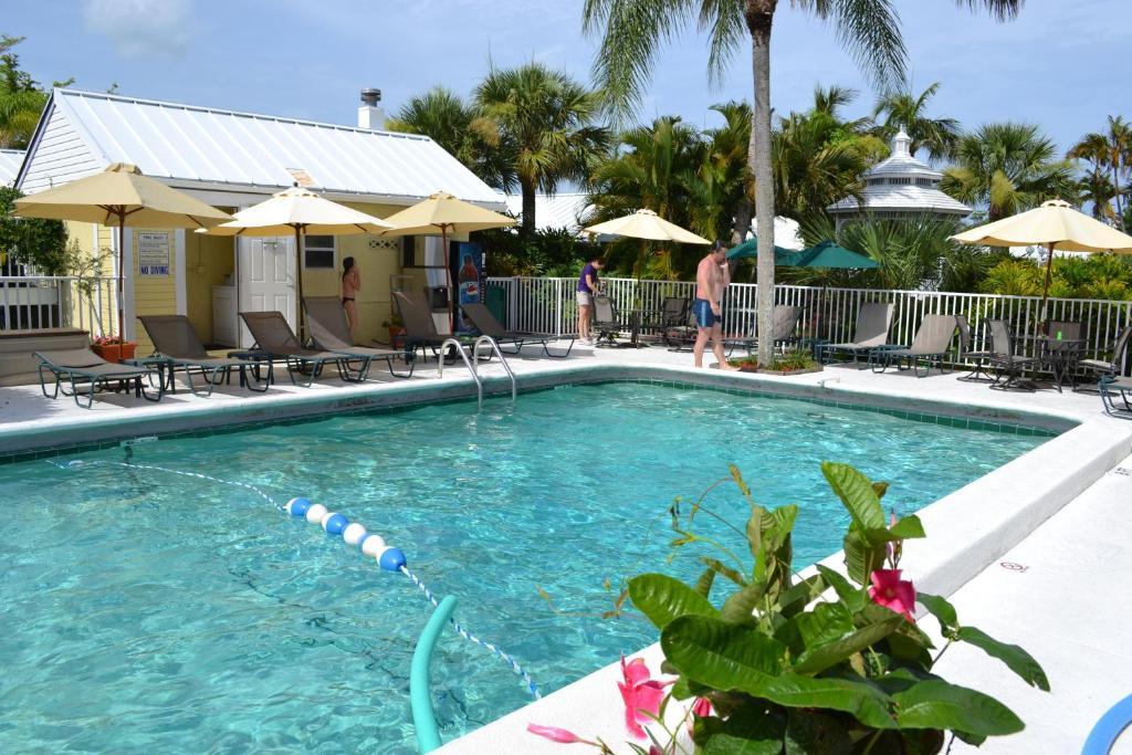 Der Swimmingpool an oder in der Nähe von Lemon Tree Inn