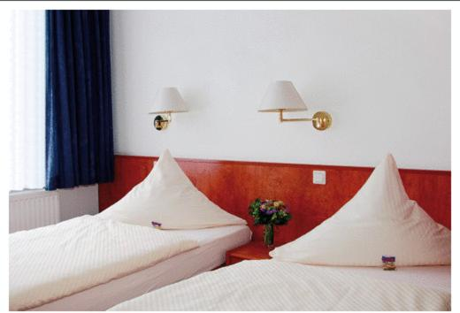 Lova arba lovos apgyvendinimo įstaigoje Hotel Meyer