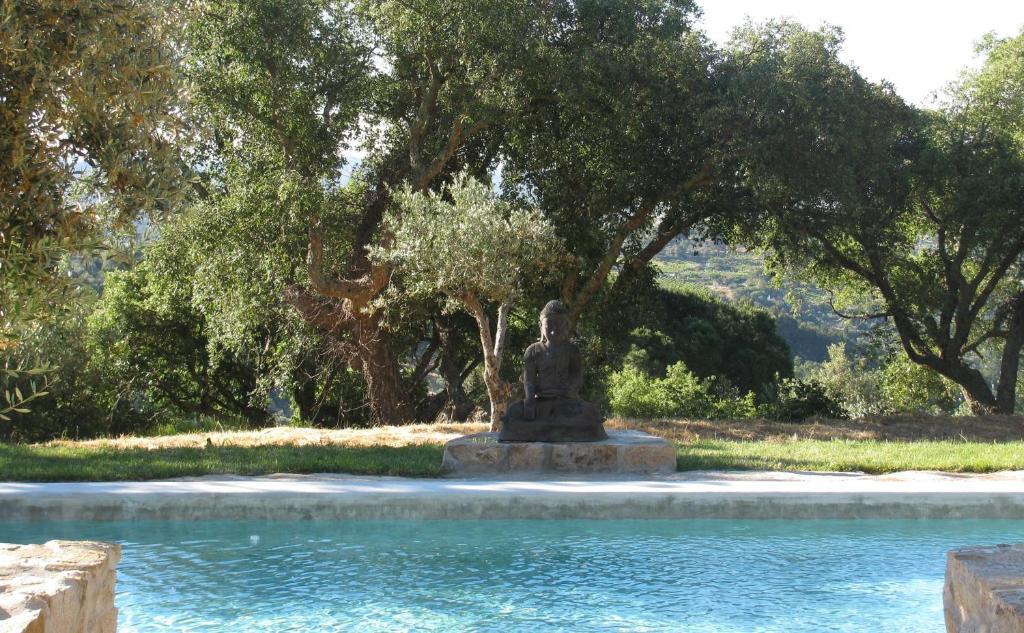 A garden outside Quinta Lua Branca