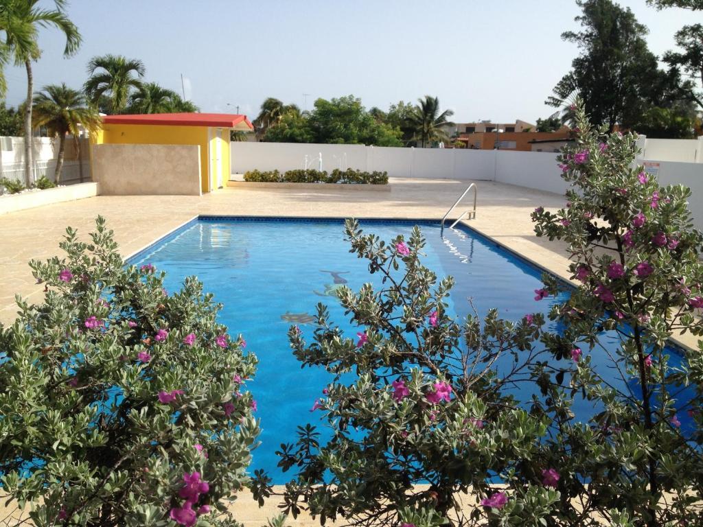 The swimming pool at or near Arecibo Inn