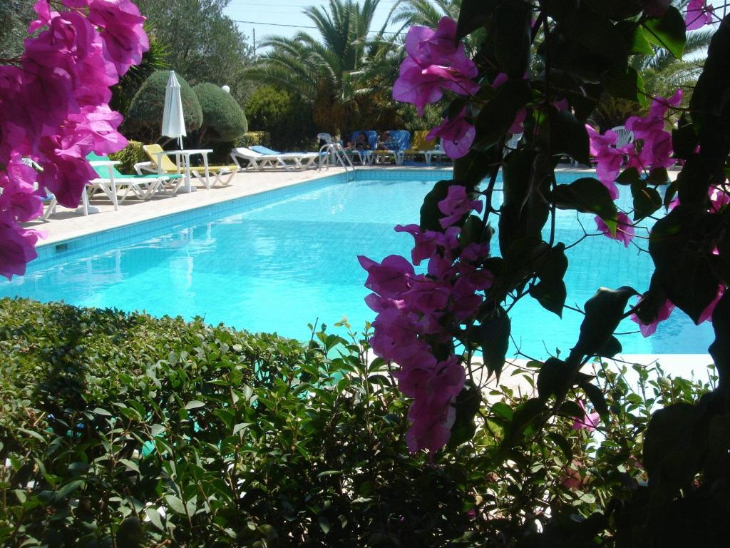 Het zwembad bij of vlak bij Barbara Studios & Apartments
