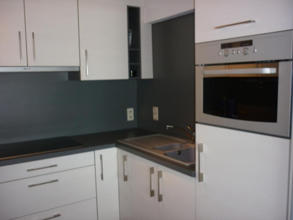 Cuisine ou kitchenette dans l'établissement Apartment Orion 14