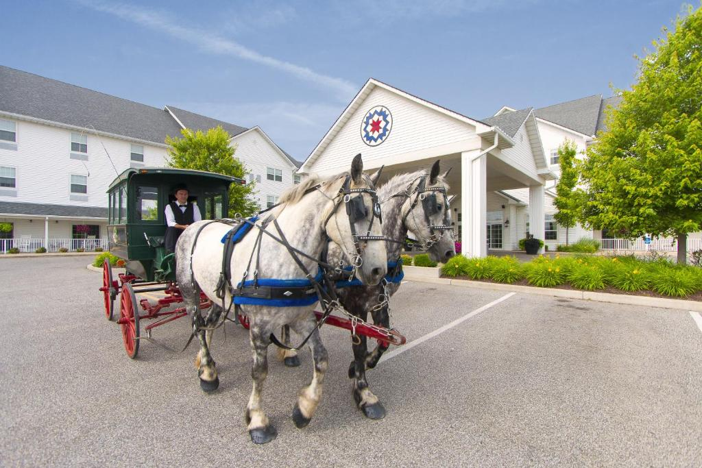 Guests staying at Blue Gate Garden Inn
