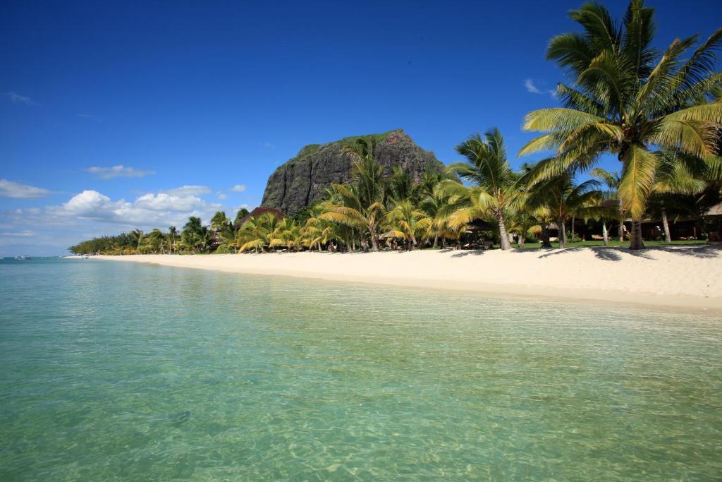 חוף במלון או בסביבה