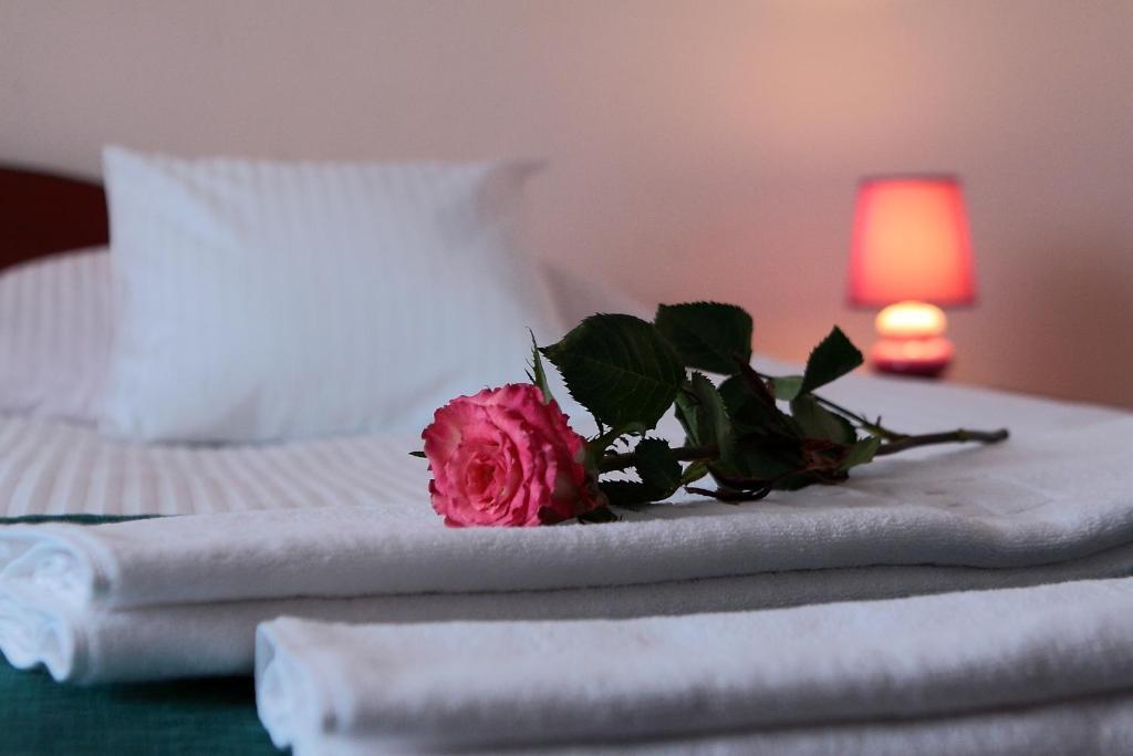 Letto o letti in una camera di Hotel Pod Kamykiem
