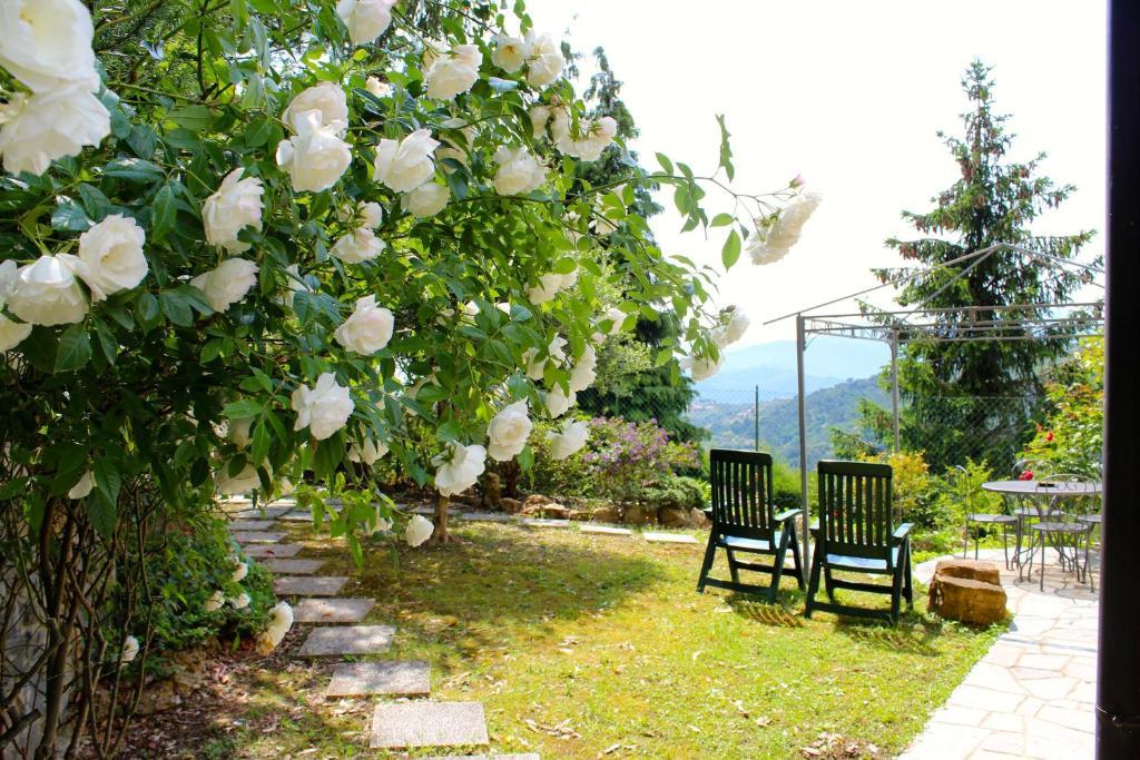 A garden outside SB Bed & Breakfast