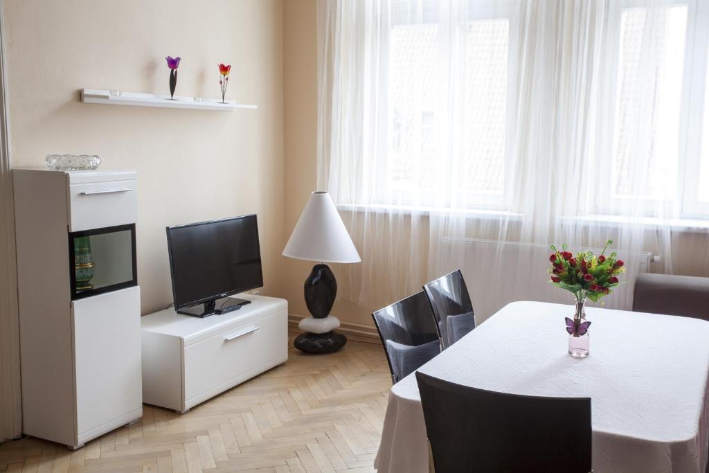 טלויזיה ו/או מרכז בידור ב-Downtown Apartments