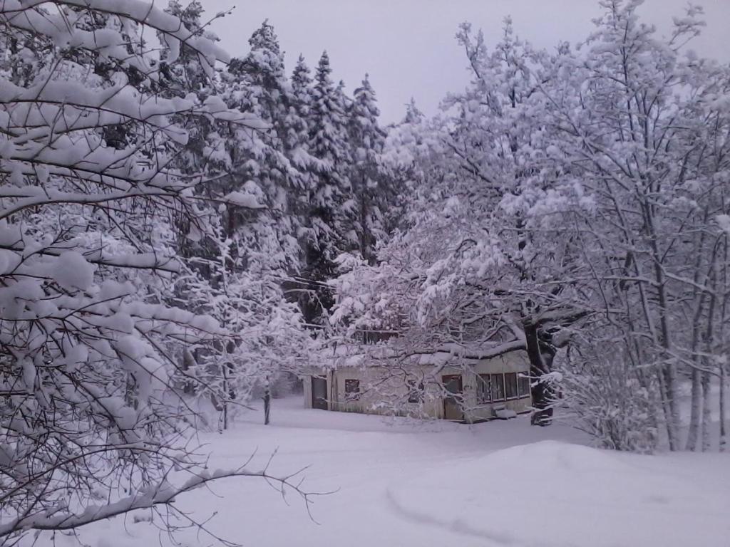 Lesogorskaya estate RUUSYAVI during the winter