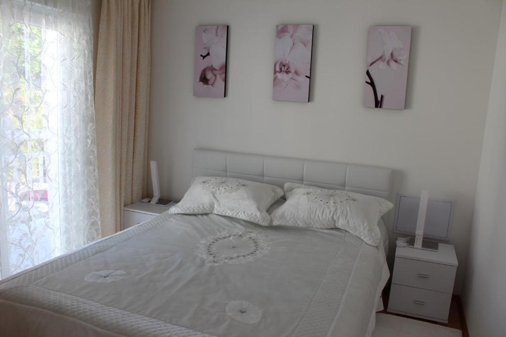 Lilac Apartments