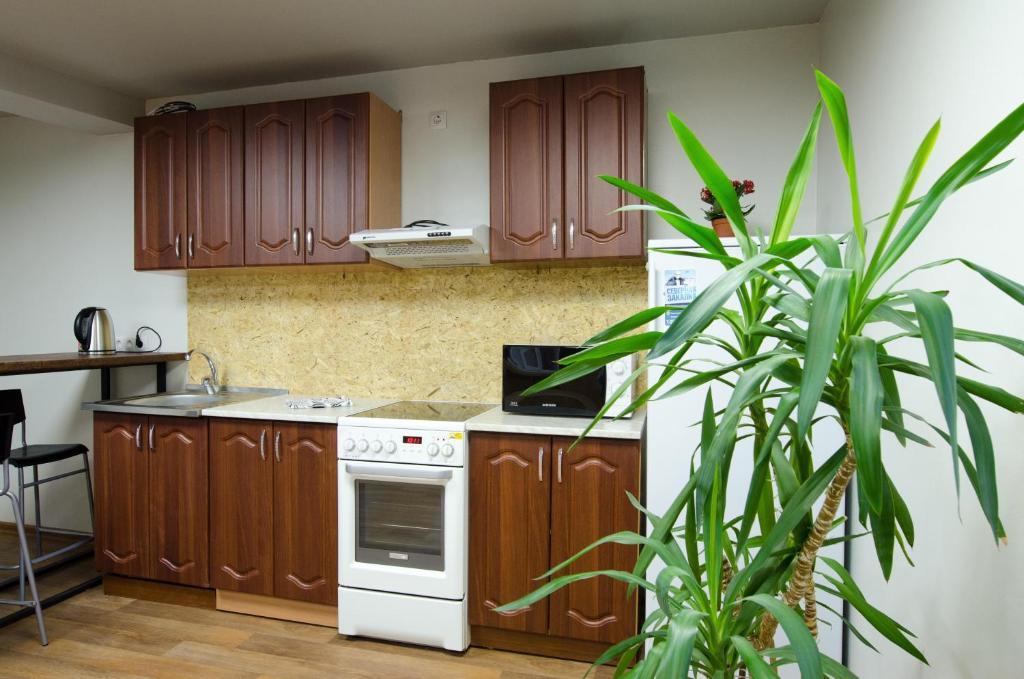 A kitchen or kitchenette at Hostel Vozduh