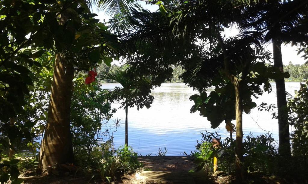 Big Banana Island Retreat