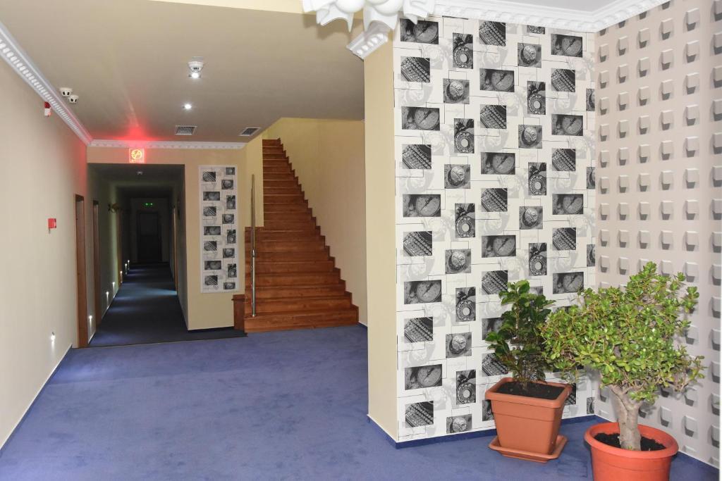 Hotel Orhideea