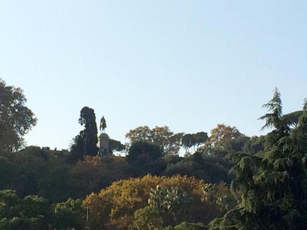 Garibaldi Roof Garden