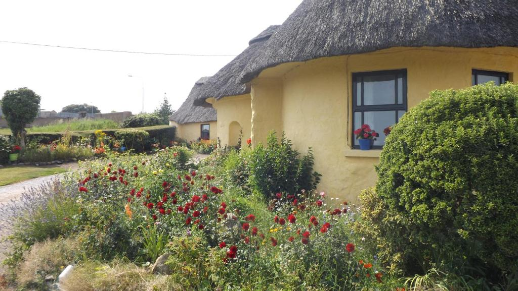 Glenart House, Tramore Updated 2020 Prices - confx.co.uk