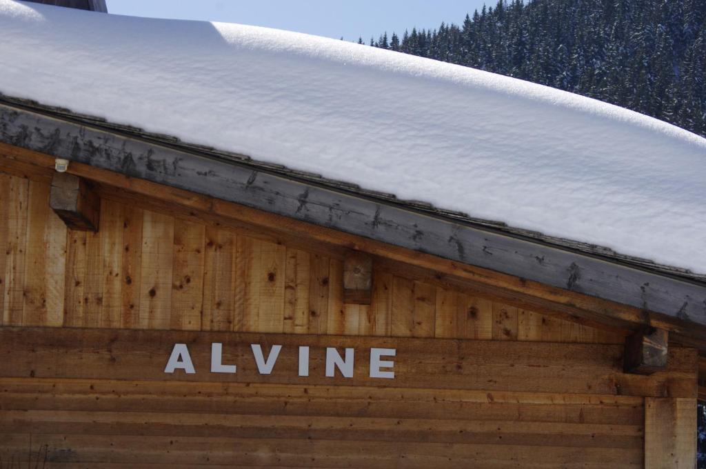 Chalet Alvine