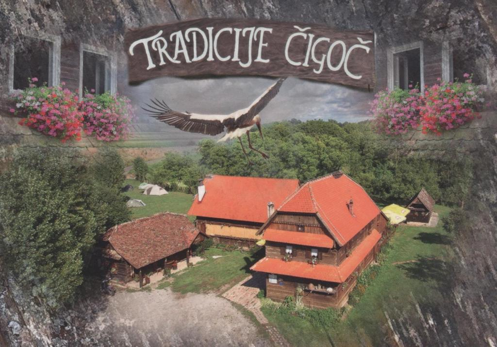 A bird's-eye view of Tradicije Cigoc