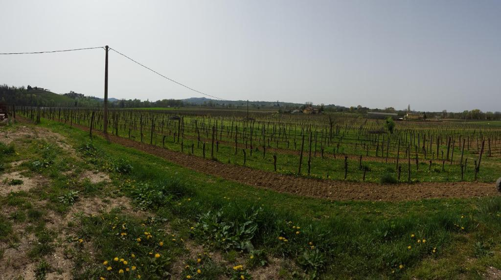 Borgo dei Sapori