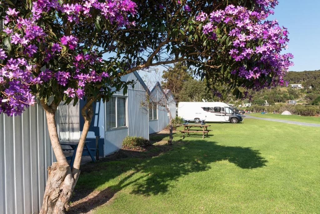 En have udenfor Waitangi Holiday Park