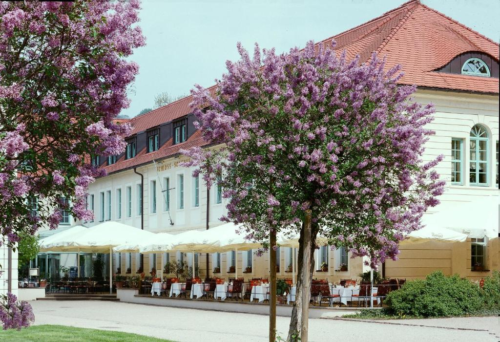 Schloss Hotel Dresden Pillnitz Dresden Updated 2020 Prices