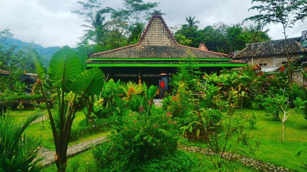A garden outside Omah Setumbu