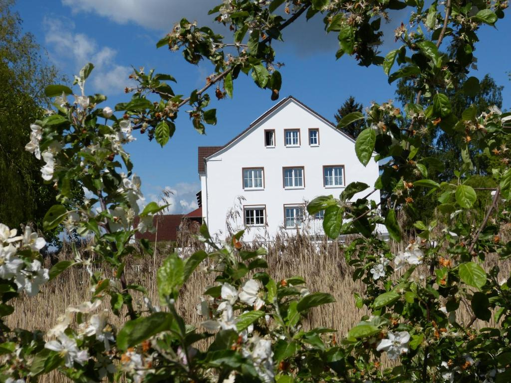 Ein Garten an der Unterkunft Das Haus am Teich