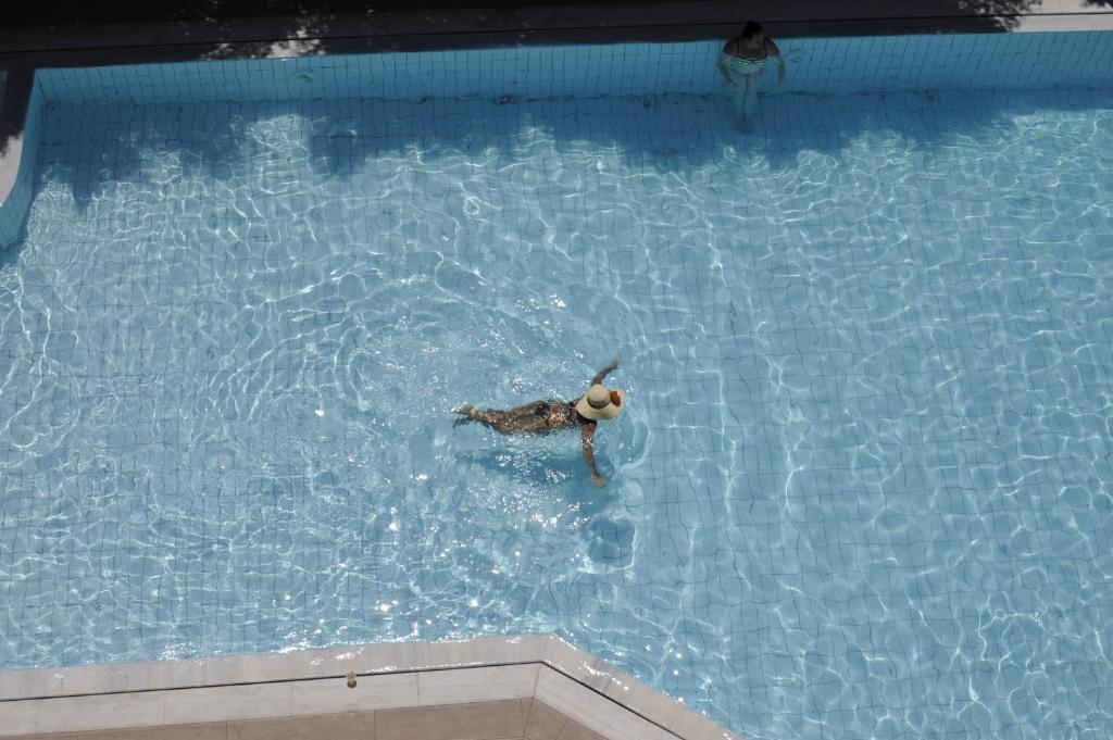 Het zwembad bij of vlak bij Porto Plazza Hotel
