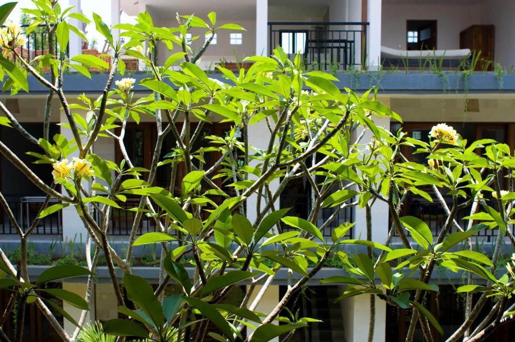 Giardino di Nani House 2