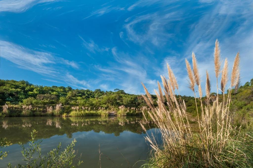 El 44 Reserva Natural de Tiempo Libre