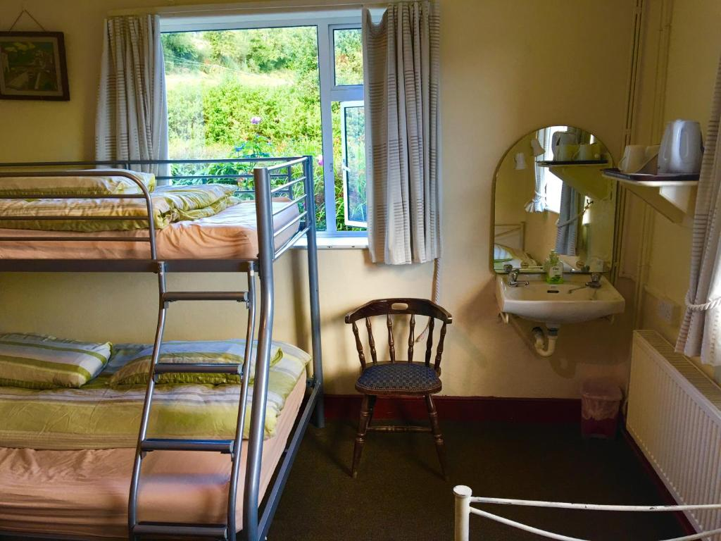 A bunk bed or bunk beds in a room at Dempseys Hostel
